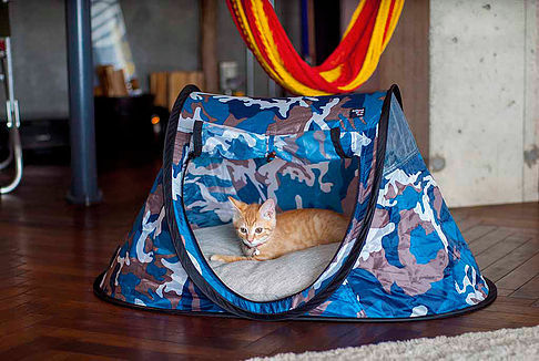 Until now though the pop-up tent has neglected a key segment. Pets. Seems odd that itu0027s taken until now. Pets well mostly dogs are fussed over like new ... & Pop-up tents for pets go on sale in Japan. Cuteness ensues | City-Cost