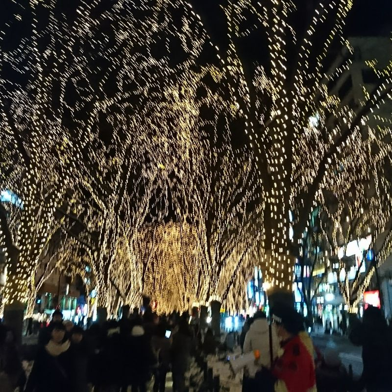Sendai Lights and Sweet Potato photo