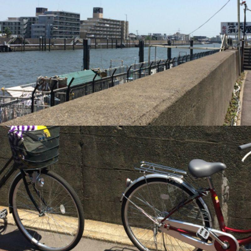 Cycling The Kyu-Edo River in Tokyo.  On Mamacharis! photo