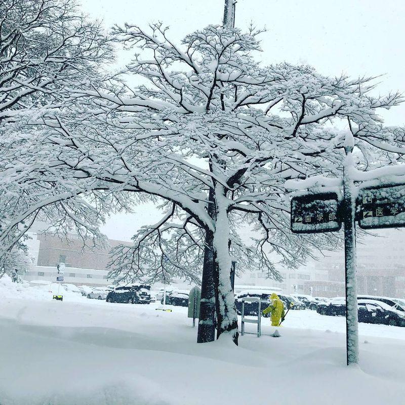 Winter in my heart photo