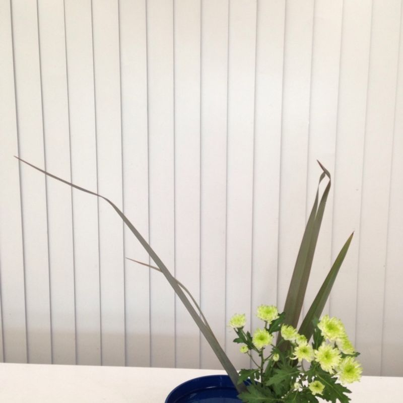 A day in a life of ikebana teacher photo