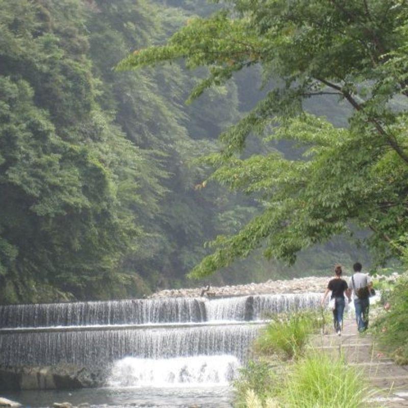 箱根での車いすの日 photo