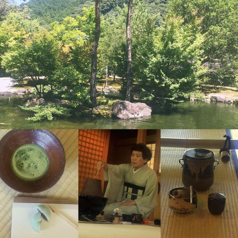 茶道...日本の茶道 photo