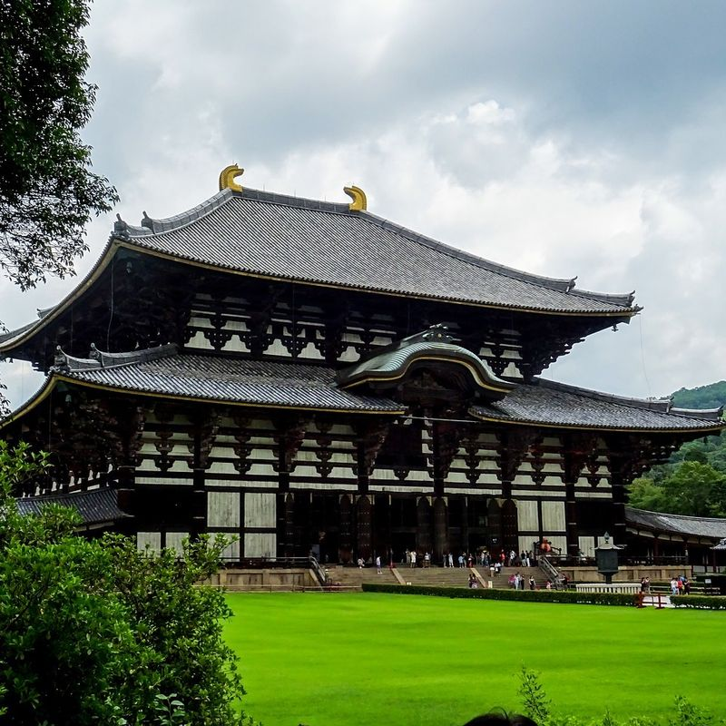 How much does it cost to travel from Osaka to Nara by train and taxi? photo