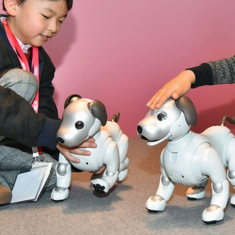 Sales of Sony's new Aibo robot dog off to solid start photo