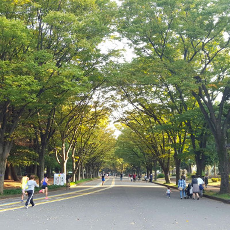 Weekends On The Cheap In Tokyo:  Komazawa Park photo