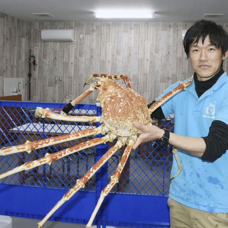 Open Susami, the small town riding the wave of its local aquarium photo