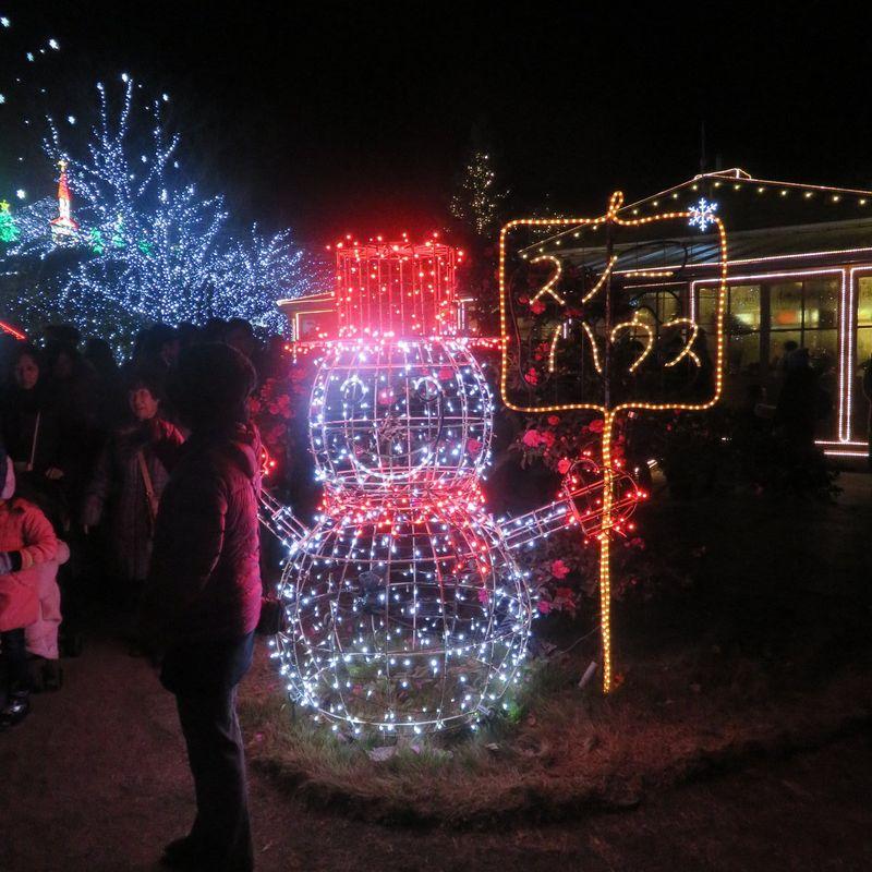 Ashikaga Flower Park Illuminations photo