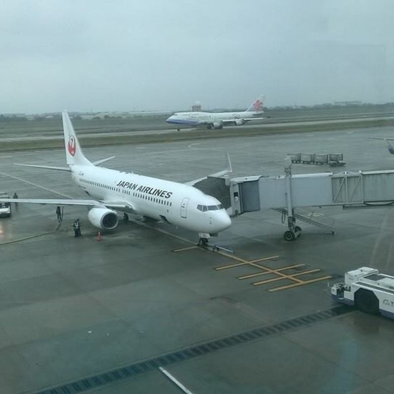 My Long-term Long-distance Relationship with JAL photo