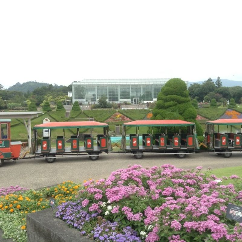 SUMMER IN JAPAN: THE HAMAMATSU FLOWER GARDEN AND THE HAMANAKO GARDEN PARK photo