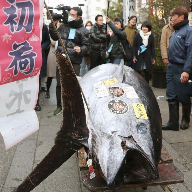 Tsukiji fish market holds final New Year auction photo