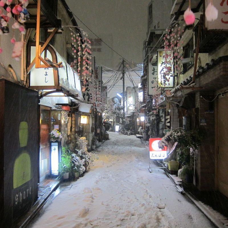 A walk through the snow world photo