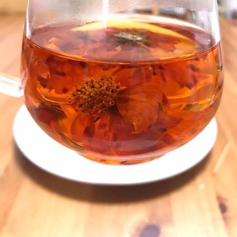 肌寒い日、温かいお茶の話 photo