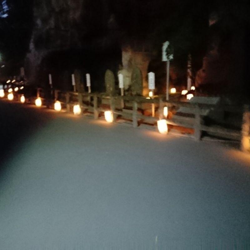 Matsushima Fall Light Up Review photo