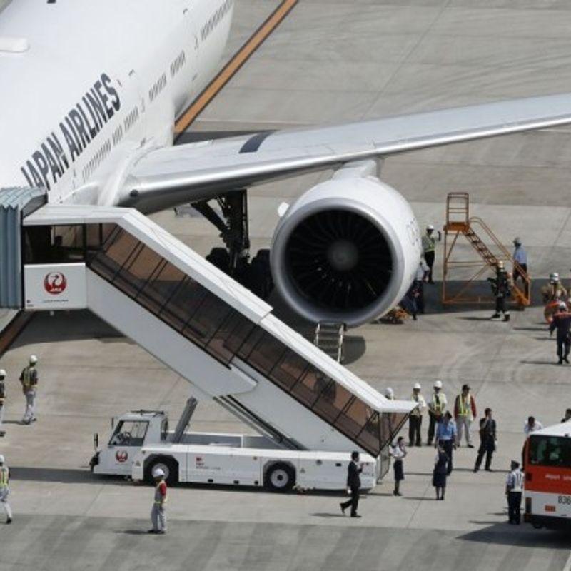 JAL plane makes emergency landing after suspected bird strike photo