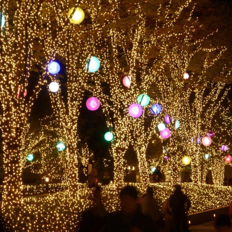 Japan's Winter Illuminations: Light em up! photo