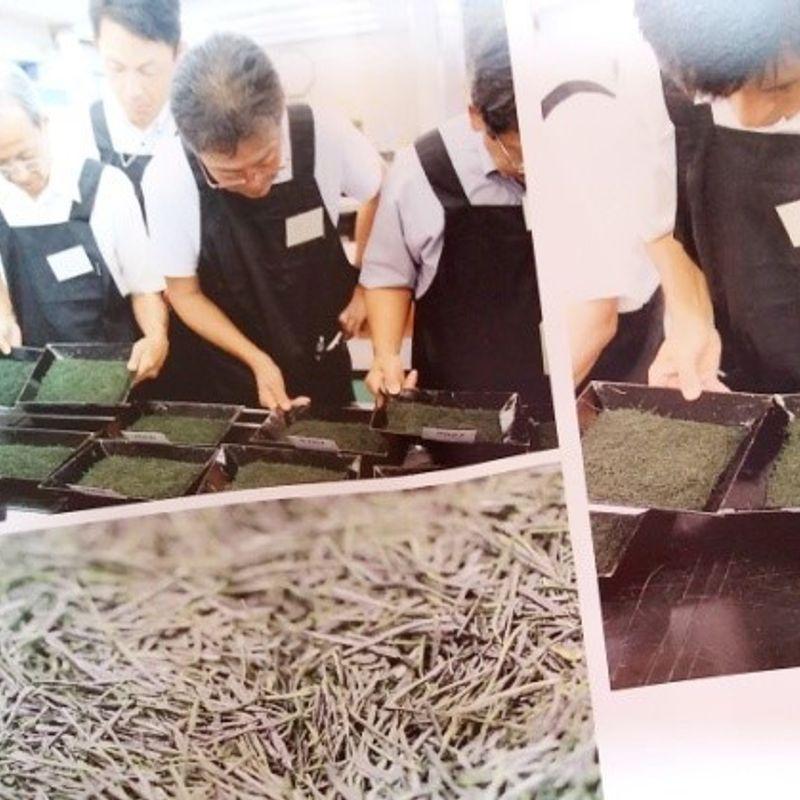 静岡県茶品評会へ行ってきました。 photo