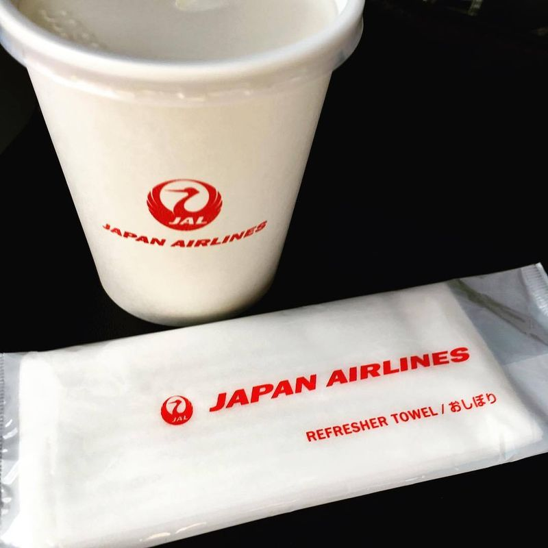 Why traveling JAL with your children just makes sense photo