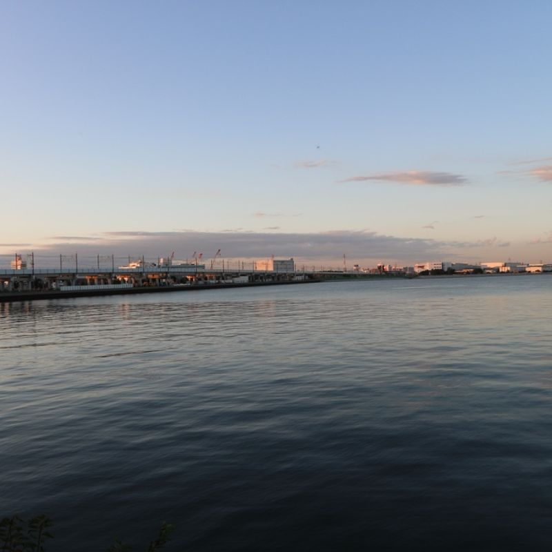 Tokyo bayside jogging just about about makes it worthwhile photo