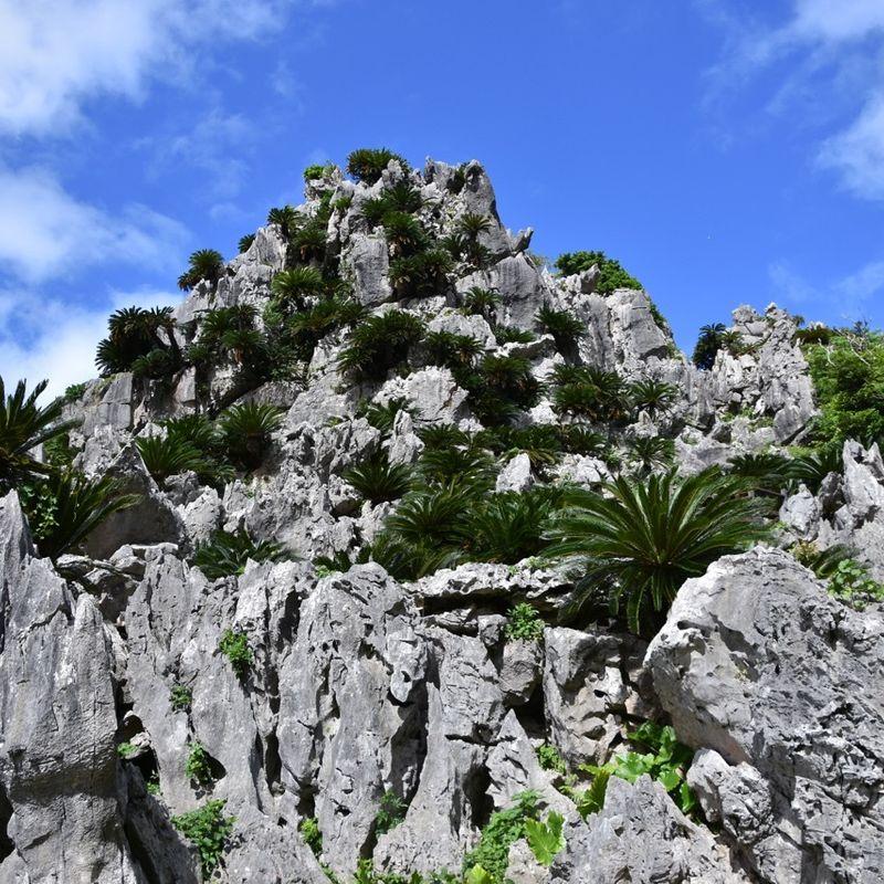 Daisekirinzan Yambaru Nat'l Park, Okinawa: Natural drama enough without need of spiritual overtures photo
