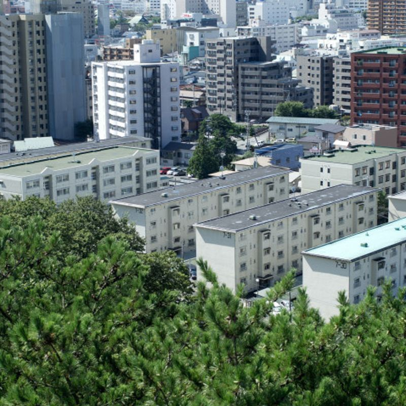 Urban Renaissance housing in Japan: What, how, and how much photo