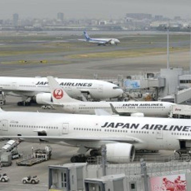 Escaped dog closes runway, disrupts flights at Tokyo airport photo
