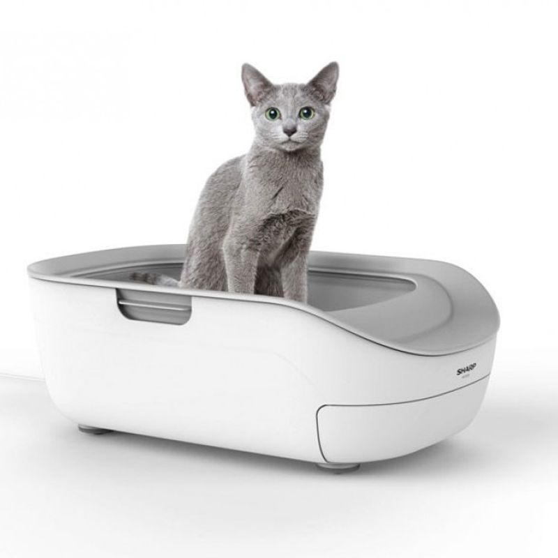 Sharp to launch smart cat toilet that can diagnose health issues photo
