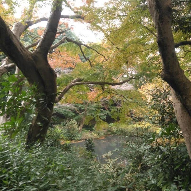 Tobu hiking : Shimizu Park Station photo