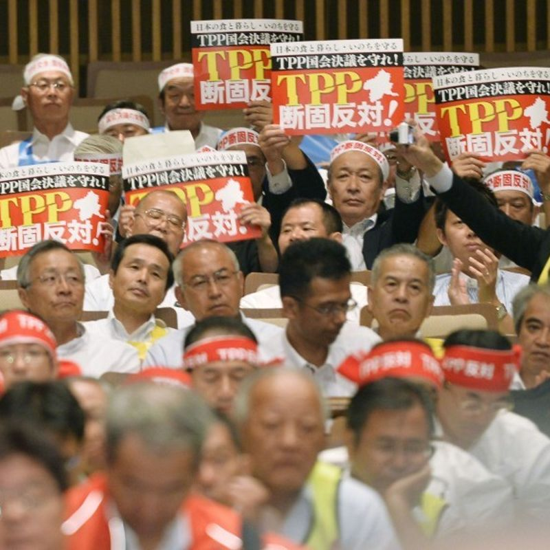 Japan farmers worried over trans-Pacific trade pact taking effect photo