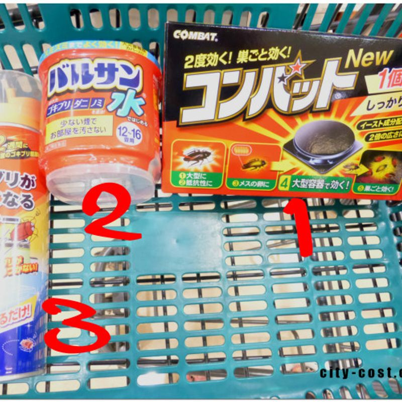 Are You Bugging Out?  Products To Fight Insects In Japan! photo