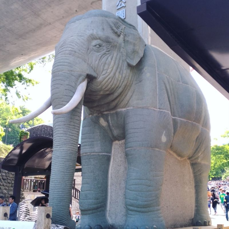 Golden Week: Visit the Zoo for Free! photo