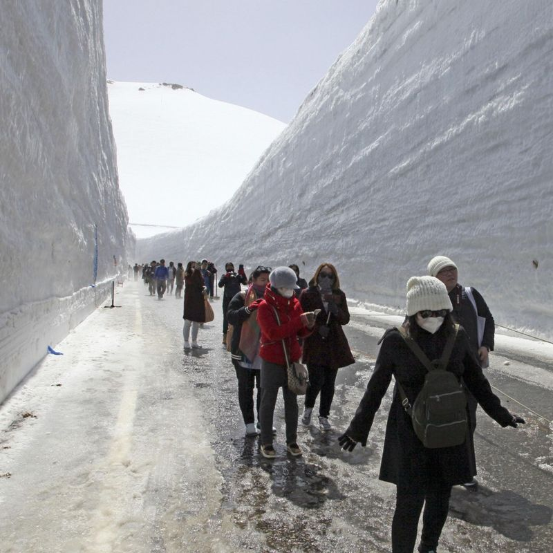 Japan's Alpine sightseeing route featuring 17-meter snow walls opens photo