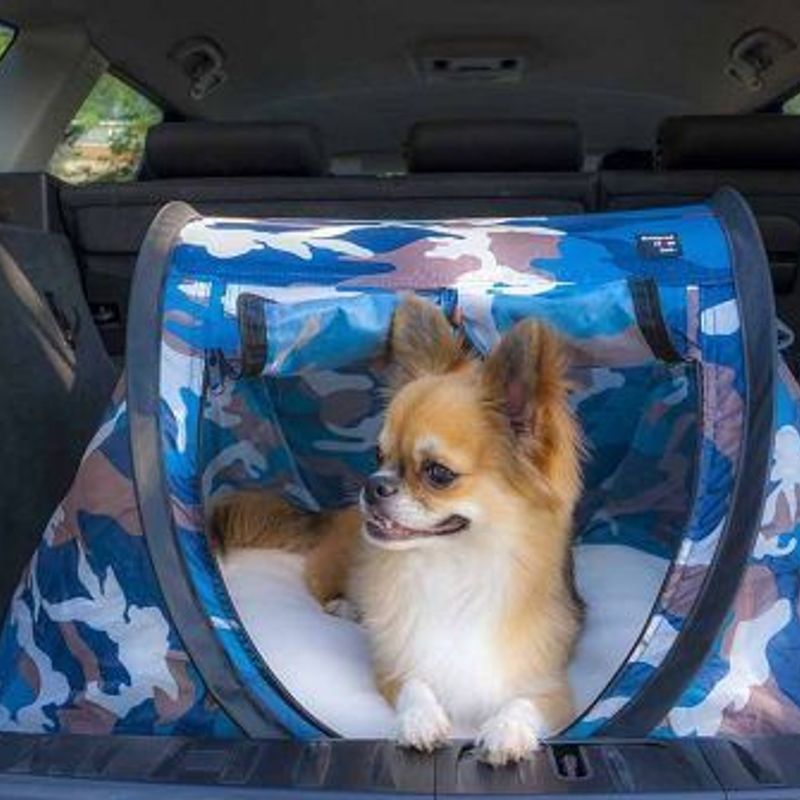 Pop-up tents for pets go on sale in Japan. Cuteness ensues photo