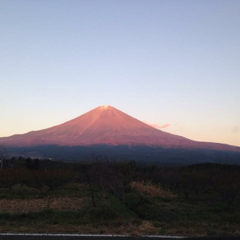 There is much to anticipate while living in Japan photo