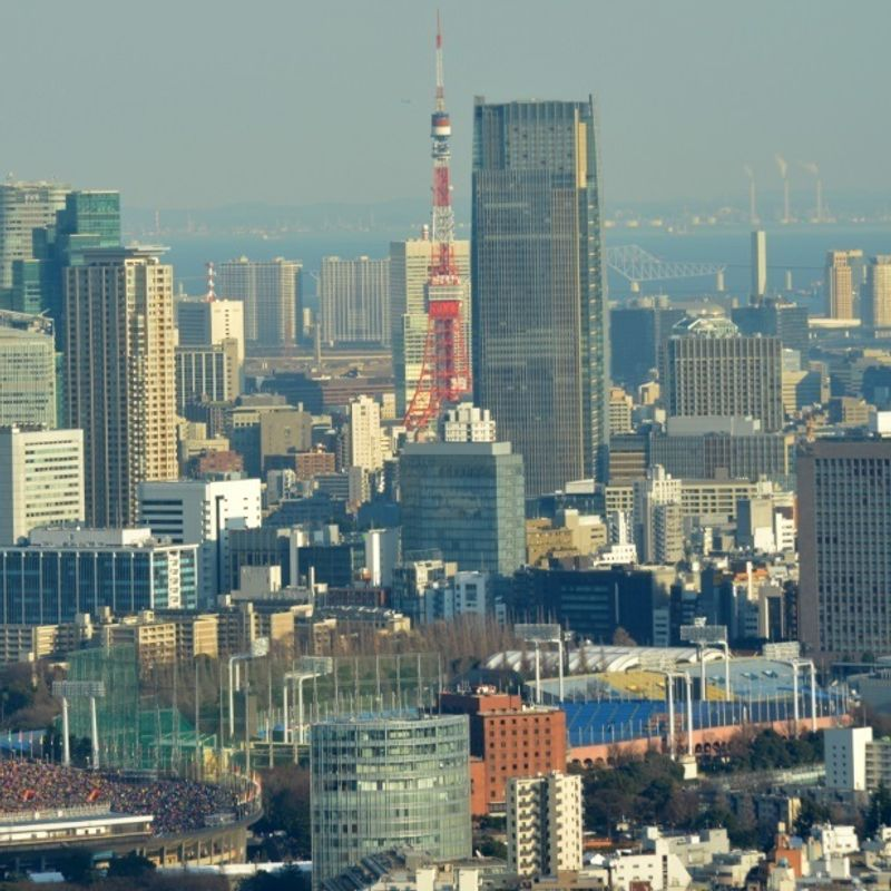 Having a free view over Tokyo  photo