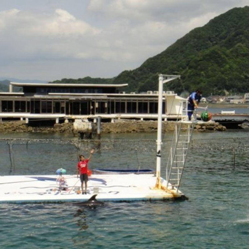 Summer Fun in Japan photo