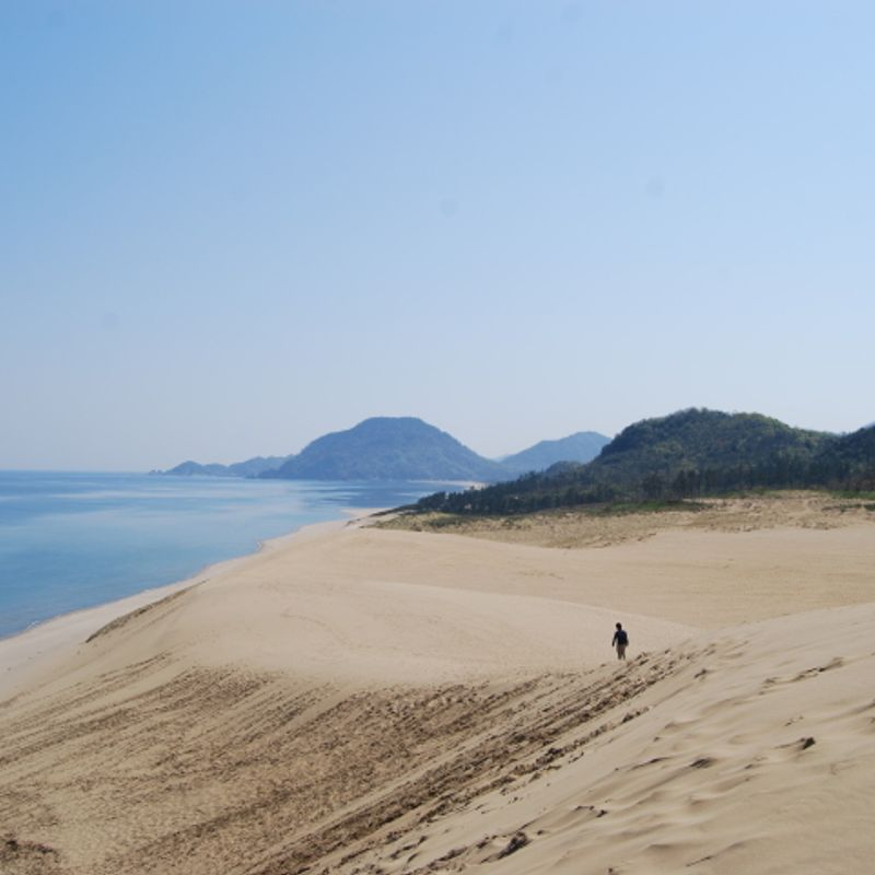 Find Your Desert Oasis in Tottori photo