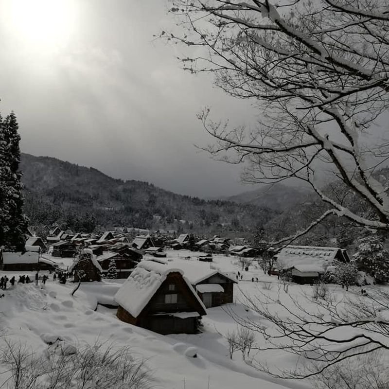 Visit To The Winter Village...A Snow Haven photo