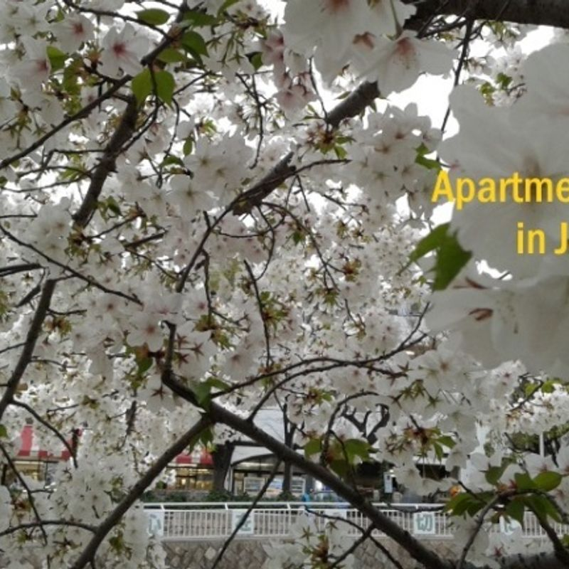 Finding the right apartment for you! photo