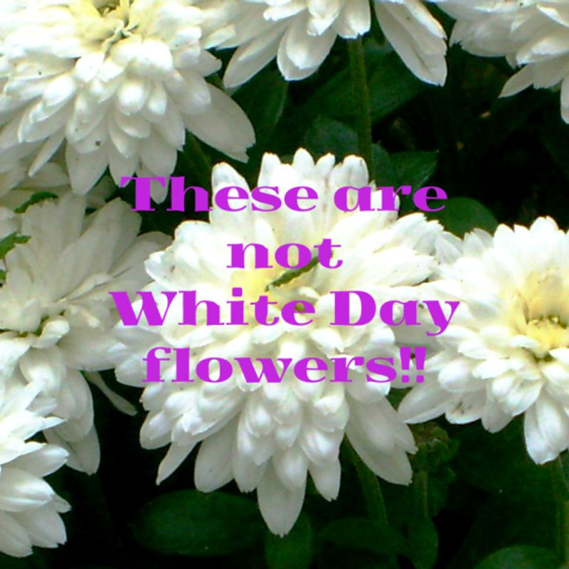 Buying Funeral Flowers on White Day in Japan … More Than Once photo