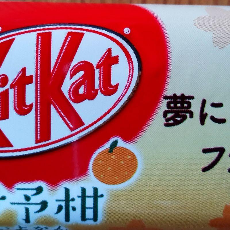Iyokan Kit Kat photo