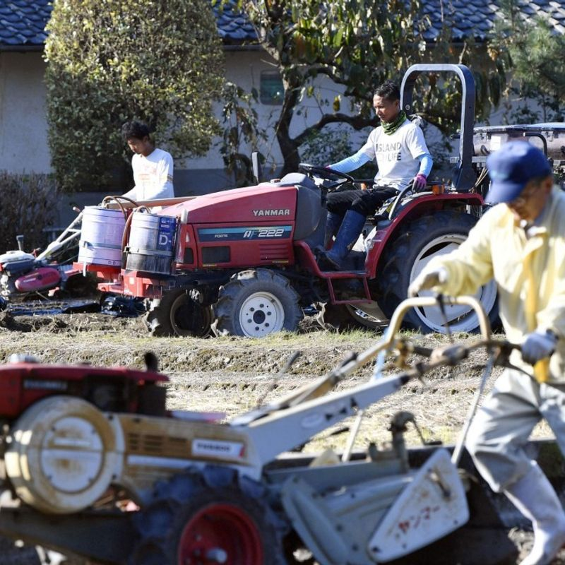 Japan not ready yet to offer foreign workers proper labor conditions photo