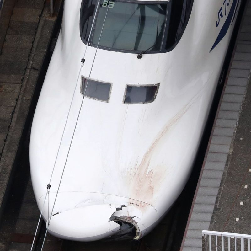 Shinkansen bullet train kills intruder on tracks, gov't orders probe photo