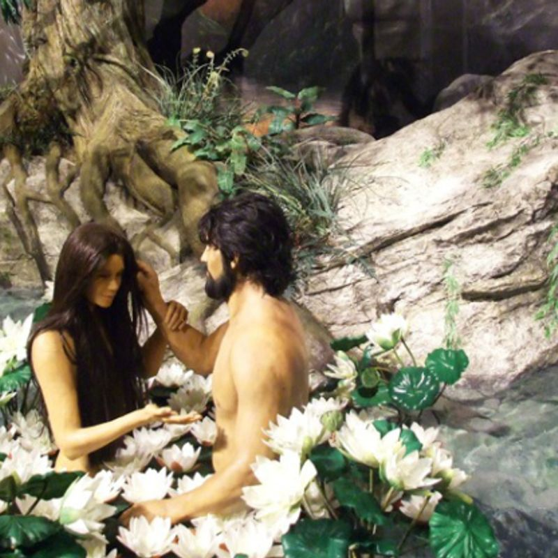 News: Naked Restaurant Set To Open in Tokyo photo