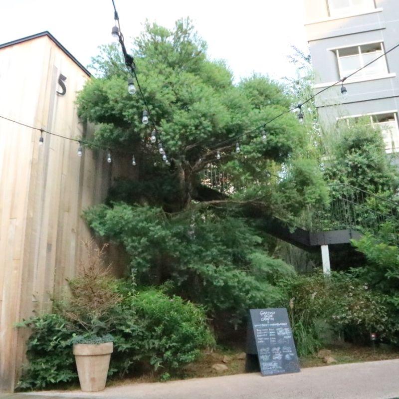 Log Road Daikanyama does away with the Tokyo noise photo