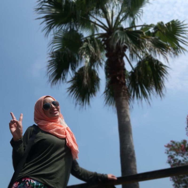 Sunami Beach Park photo