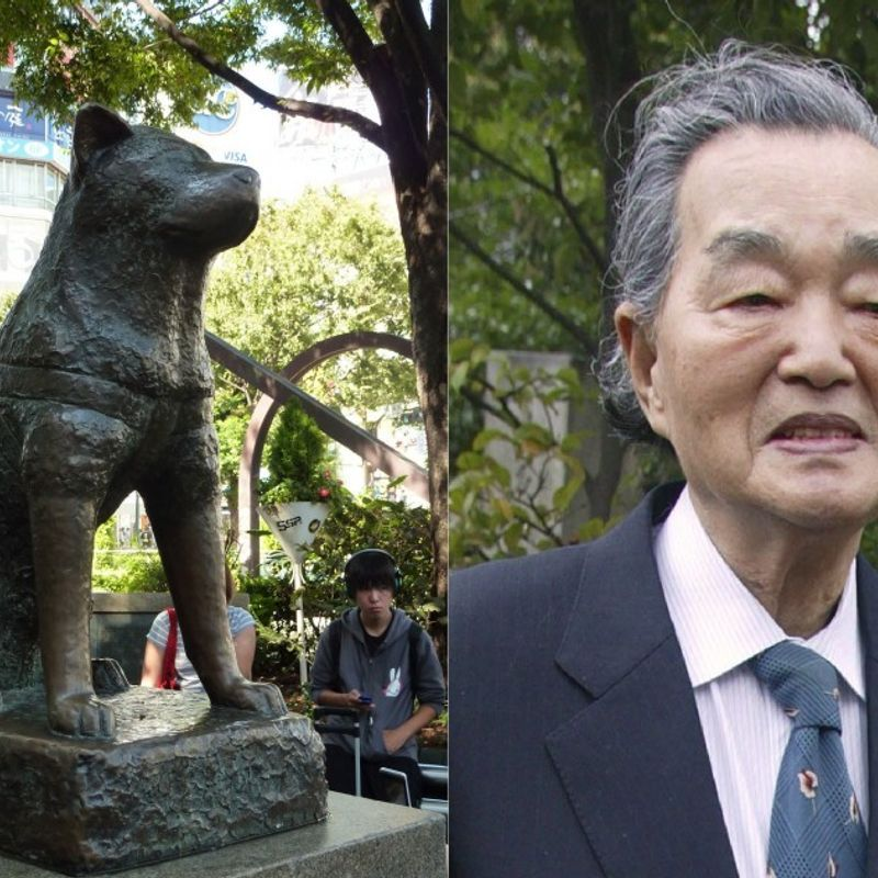 Creator of storied Tokyo dog statue, featured in Hollywood film, dies at 95 photo