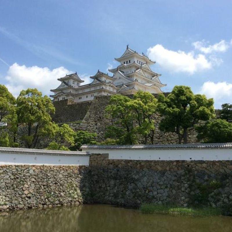 Japan's Most Beautiful Castle photo