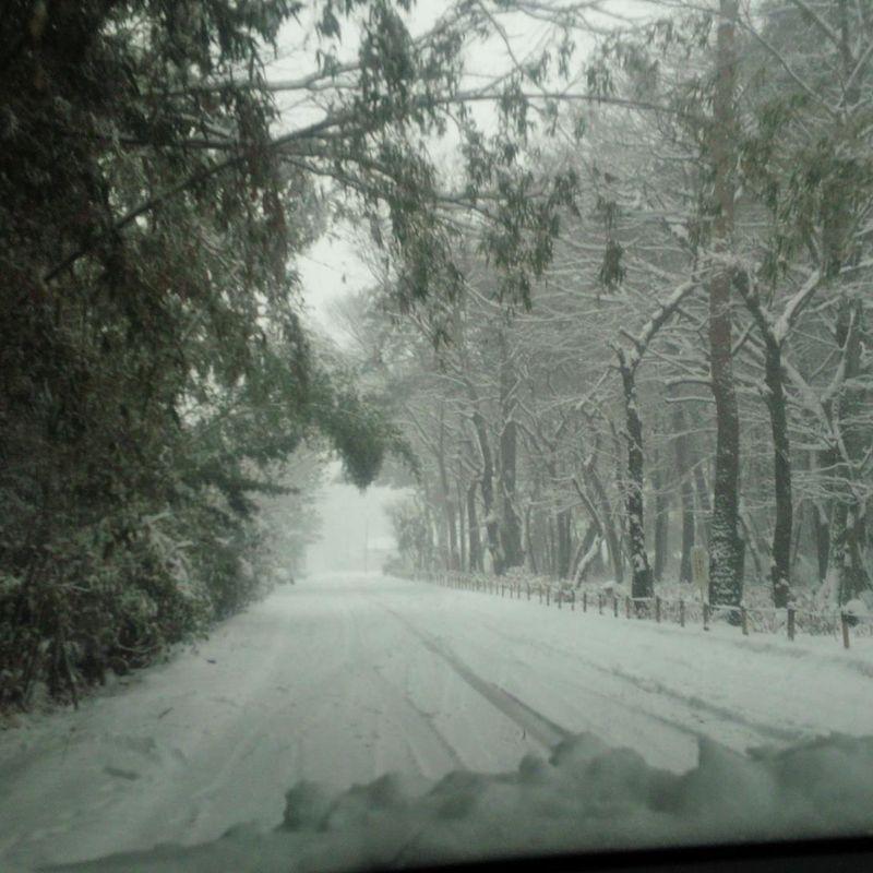 如何保持在日本冬季的健身旅程的动力 photo