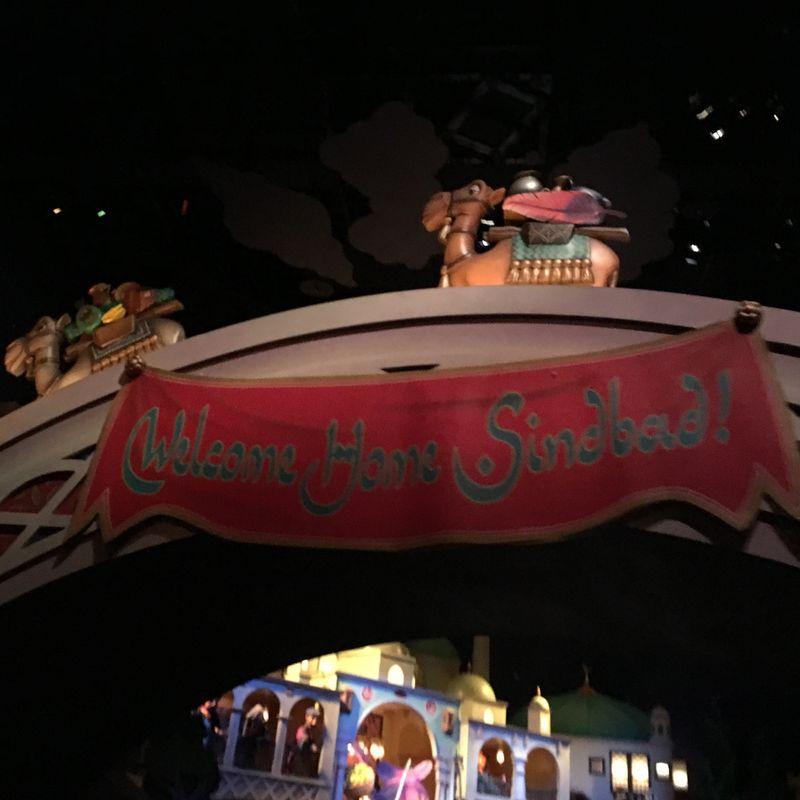 Best things to do in Tokyo DisneySea photo